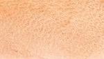 Papua Skin